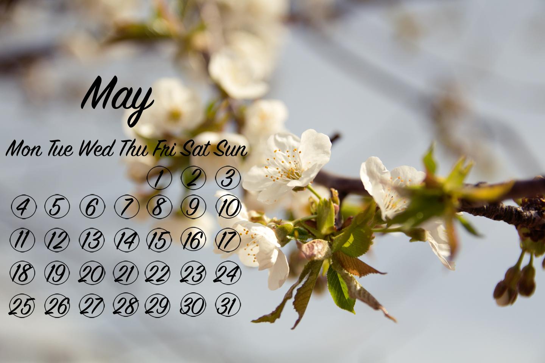 flower wallpaper, desktop background, may