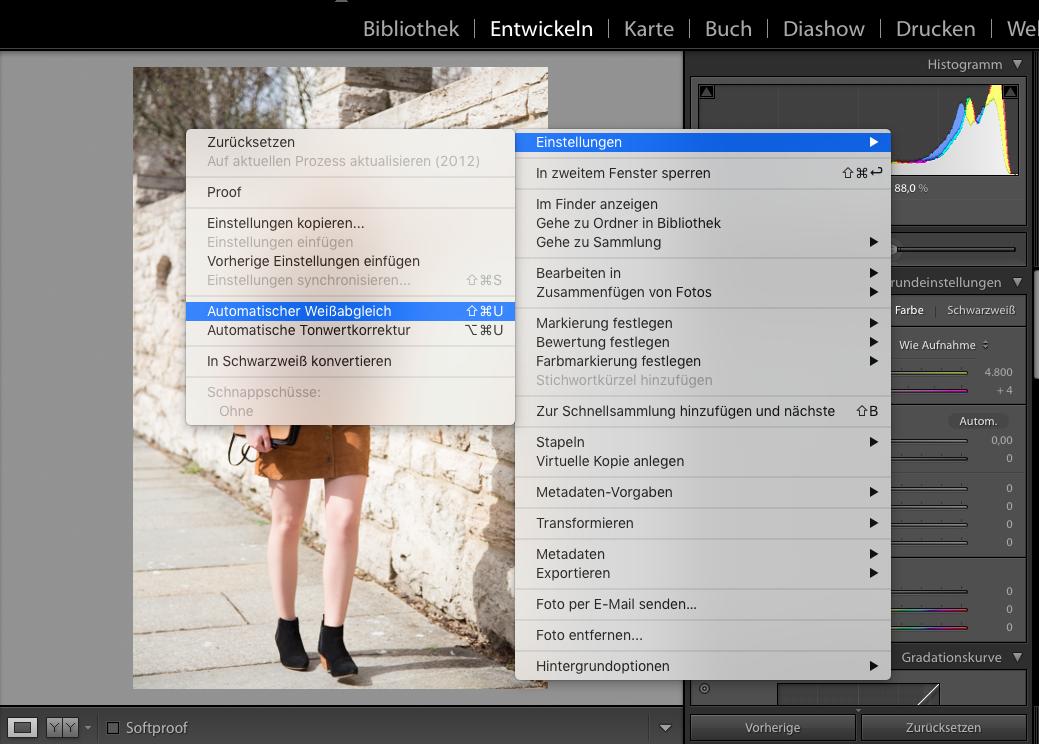 Bildbearbeitung, Modeblogger, Tipps, Lightroom, Photoshop