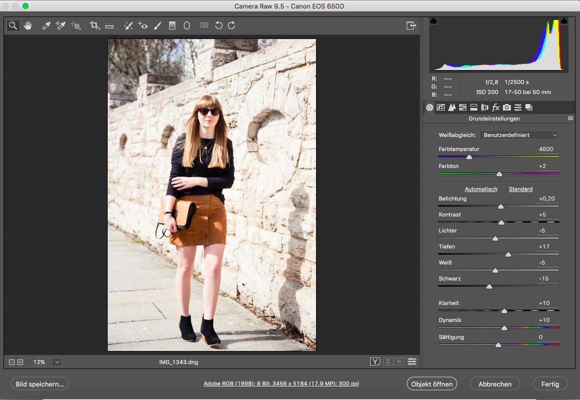 Tipps, Bildbearbeitung, Photoshop, Camera Raw, Fashionblogger, Styleblog, Outfitbilder