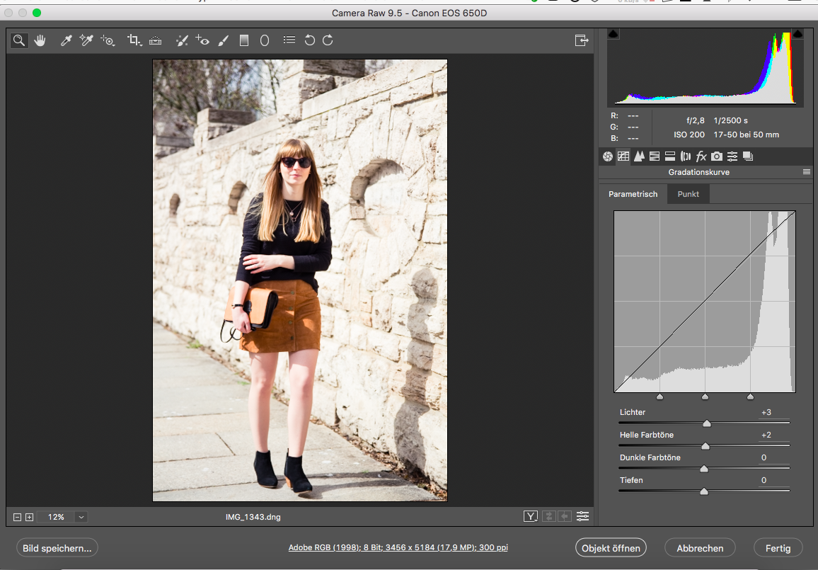 Tipps, Bildbearbeitung, Photoshop, Camera Raw, Gradationskurve, Fashionblogger, Styleblog, Outfitbilder