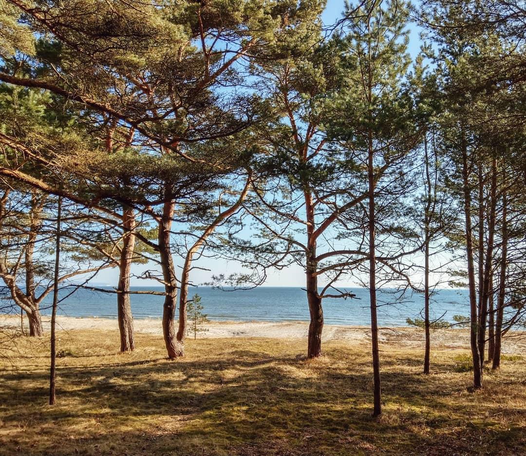 Binz, Rügen, Ostsee, meer, baltic sea