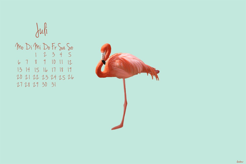 wallpaper juli, flamingo, free, kostenlos