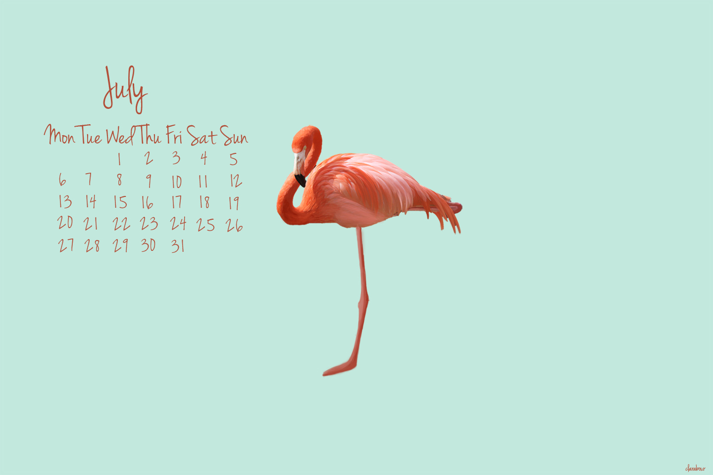 flamingo wallpaper, desktop background, freebie, downloadable, free