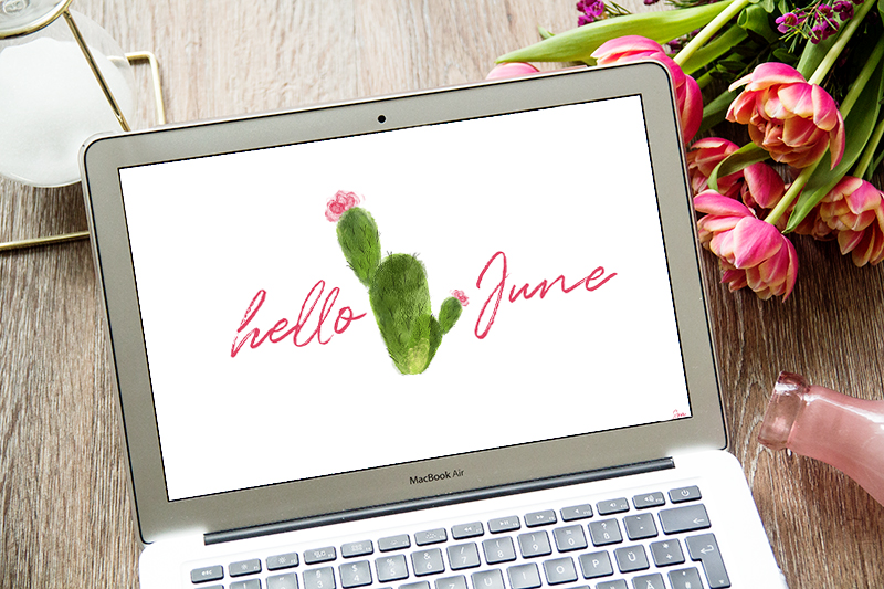 Freebie, Wallpaper, June, Juni, Desktop, Hintergrund, Kaktus, cactus