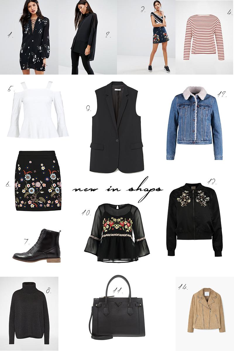 new in shops, shopping, embroidered denim skirt, flower, autumn